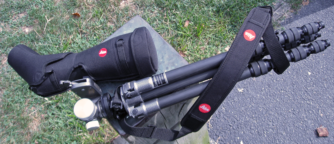 Carrying a Leica Apo-TELEVID 82 telescope in Ever Ready Case by Tripod (453,427 bytes)
